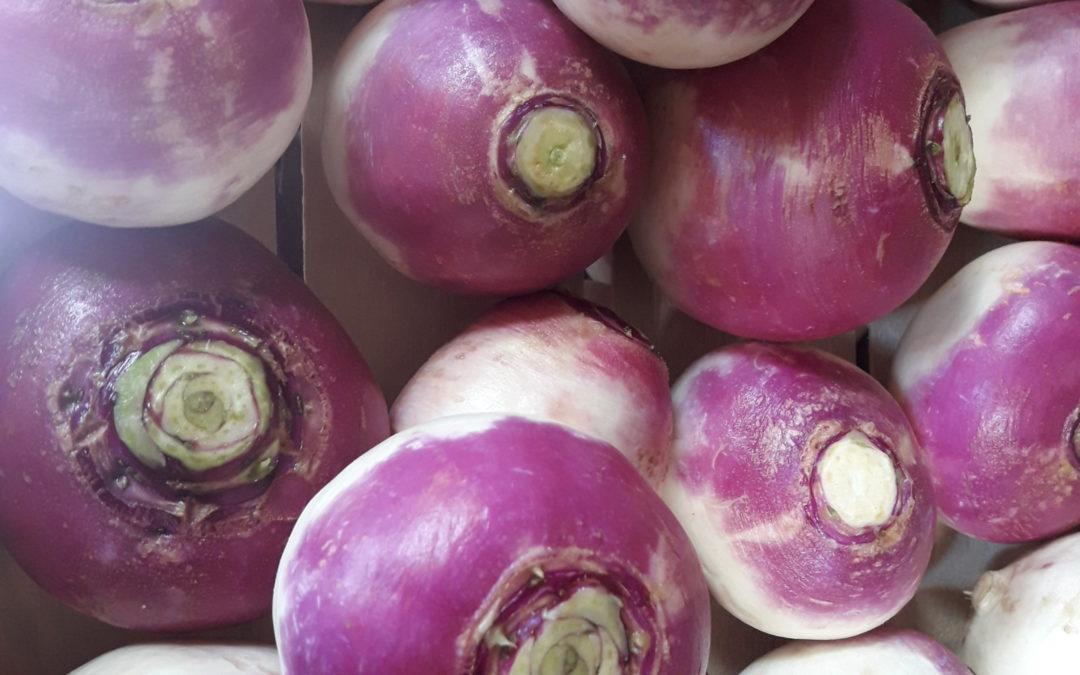 La conversion vers l'agriculture biologique